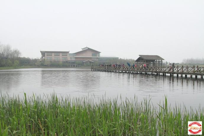 【活动费用】780元/人  包含千岛油菜花门票 船票,李中森林公园,姜堰